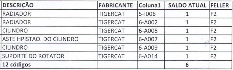 Feller Buncher Tigercat - Mais peças diversas