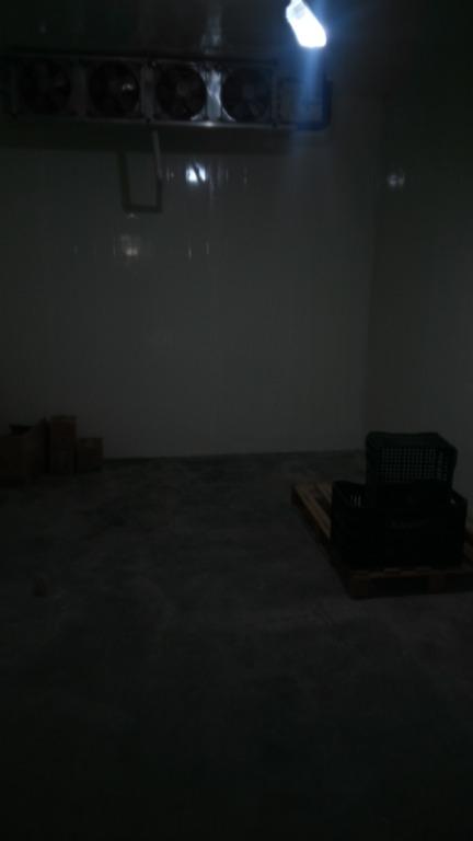 Câmara Fria Reformada
