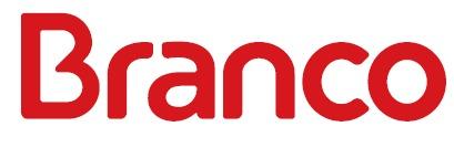 BRANCO MOTORES - BRIGGS-logo