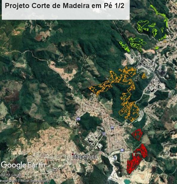 Aprox. 27.800 m3 de Pinus e Eucalipto em Pé em uma área de 137 ha.